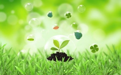 Eco Friendly By Going Green